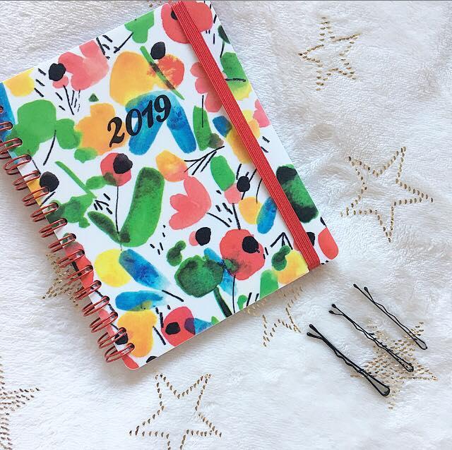 handbag essentials diary
